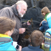 Thumbnail image for Art & Environment Saturdays 2012 : Marine Biology in Castlerock