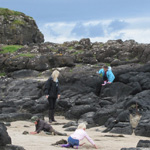 kids art & environment classes castlerock portrush northern ireland 2012